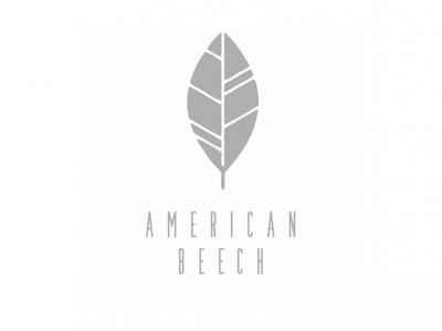 American Beech • Greenport