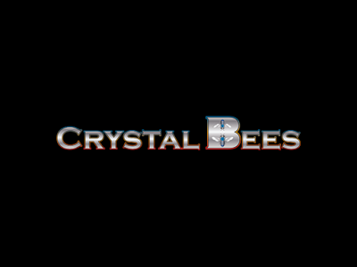 Crystal Bees • Southington